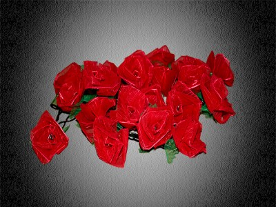 Rosenblüten Lichterkette rote Rosen Lichterkette roses light chain red rose light chain